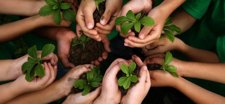 sustentabilidade-nas-empresas-1170x780